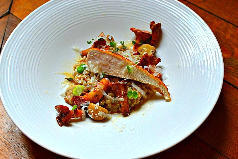 «Orzotto», risotto d'orge perlé au poulet grillé et girolles