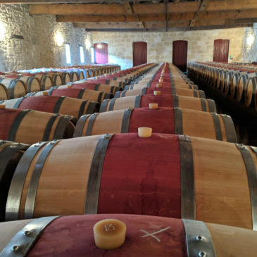 Fabrication du vin : comment fait-on du vin ?