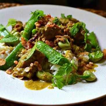 Les curry thaïlandais : recettes, conseils, préparation et ingrédients !