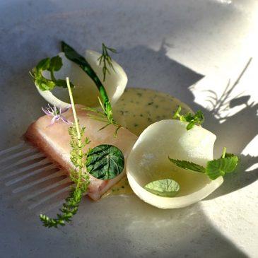 Restaurant Studio à Copenhague : voyage dans les étoiles de la cuisine danoise